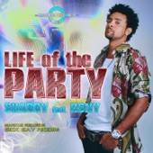 Life of the Party (feat. RSNY) - Single