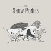 The Show Ponies - Stupid (feat. Noam Pikelny)