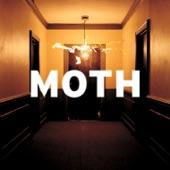 Moth - I See Sound