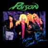 Poison - Nothin' But a Good Time kunstwerk