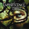 Anywhere but Home (Live from Le Zénith, France 2004), Evanescence