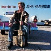 John Hammond - Spider And The Fly