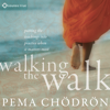 Pema Chödrön - Walking the Walk: Putting the Teachings into Practice When It Matters Most artwork