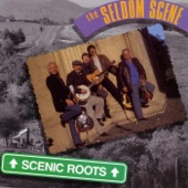 The Seldom Scene - If You Ever Change Your Mind