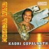 Musical Wind - Kadri Gopalnath