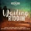 Waiting Riddim - Various Artists, Various Artists
