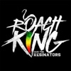 Solution: Revolution - Single - Roach King and The Resinators