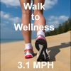 Walk to Wellness - Tom Diffenderfer