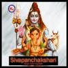 Sivapanchakshari - Shine Kumar & Jayanthi