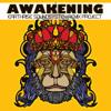 Always (feat. Renata Youngblood, Dave Eggar) [Nickodemus Remix] [Nickodemus Remix] - EarthRise SoundSystem