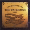 The Secret Life of the Waterboys 1981 1985