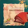Verschillende artiesten - Orquídeas Vallenatas kunstwerk