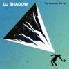 DJ Shadow Music