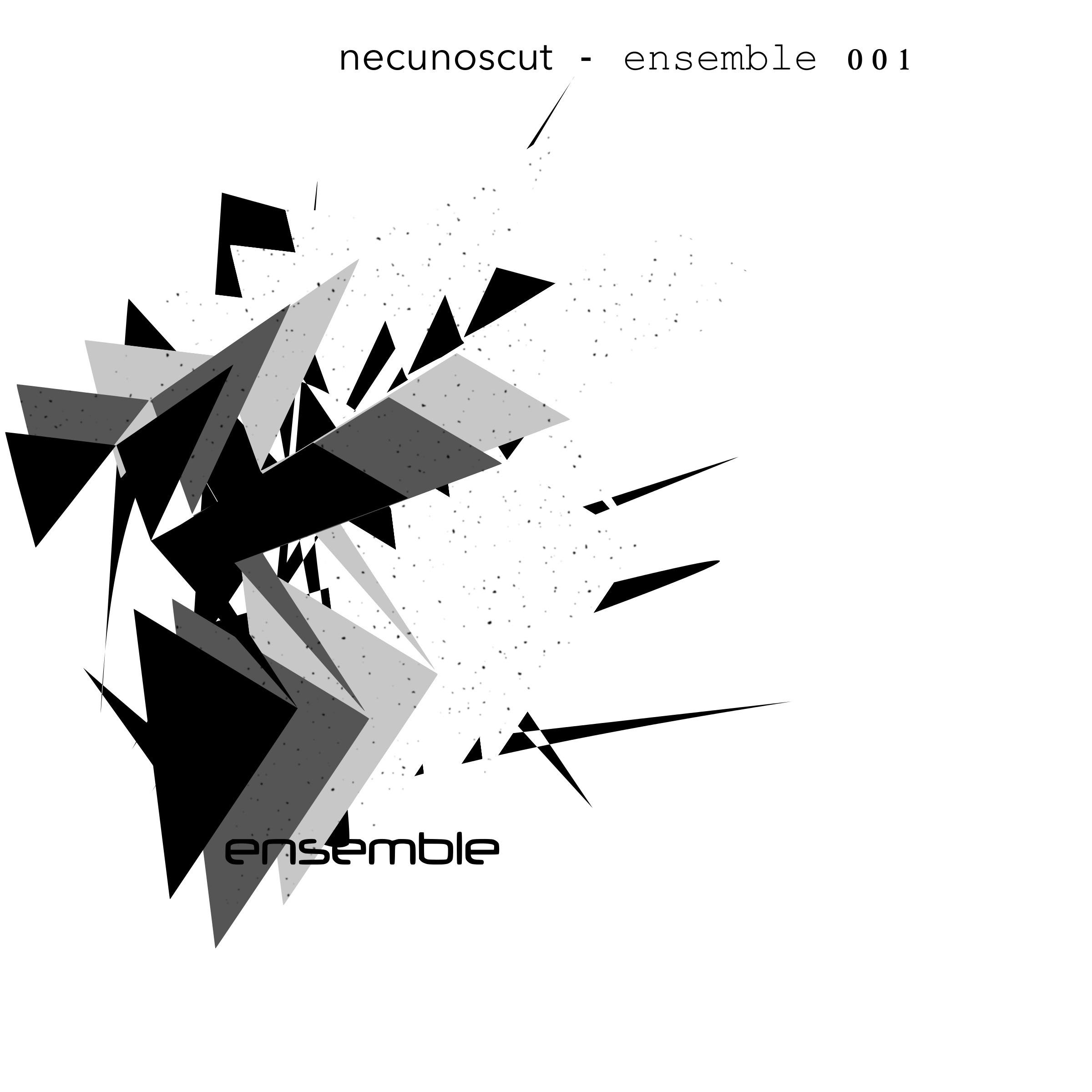 Ensemble 001