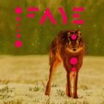 Faye - Teacups