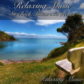 Relaxing Music: Sit Back, Listen And Relax-Relaxing Music