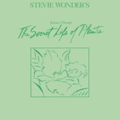 Stevie Wonder - Venus' Flytrap and the Bug
