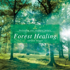 Forest Healing - Stress Reduction