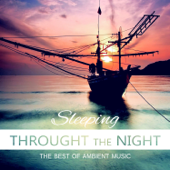 Sleeping Through the Night - The Best of Ambient Music, Bedtime Stories Melodies for Relax, Sleep Training and Regeneration