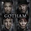 Gotham, Season 1 wiki, synopsis