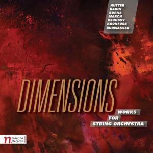 Richard Stoltzman, Slovak Radio Symphony Orchestra & Kirk Trevor - Préludes, Book 1, L. 117: No. 8, La fille aux cheveux de lin (Arr. R. Stoltzman for Clarinet & String Orchestra)