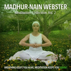 Meditation Collection, Vol. 2