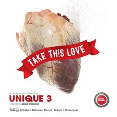 Take This Love - Single