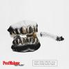 Post Malone - Go Flex artwork
