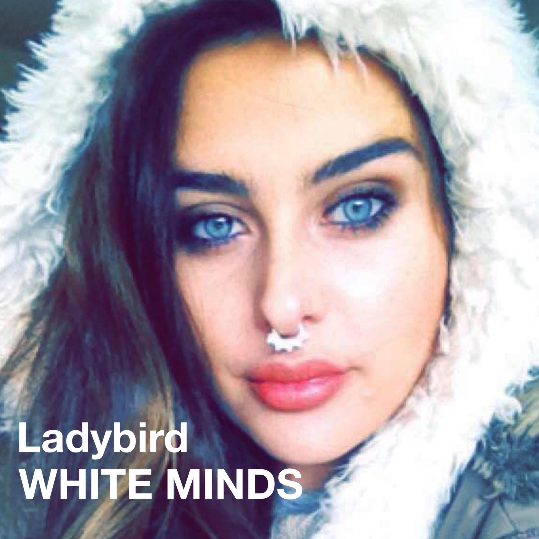 Ladybird - Single
