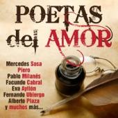 Mercedes Sosa - Soy Pan, Soy Paz, Soy Más