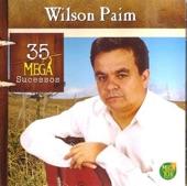 musica te amo de wilson paim