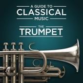 Concerto a Trombe Principale in E Major for Trumpet and Orchestra, S 49, WoO 1: III. Rondo artwork