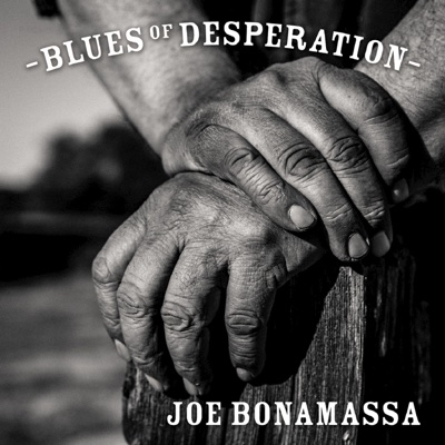 Blues of Desperation - Joe Bonamassa album