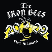 The Iron Bees - There Was a Time