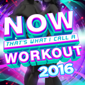 Now That's What I Call A Workout 2016-Various Artists