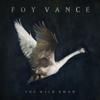 Foy Vance - The Wild Swan artwork