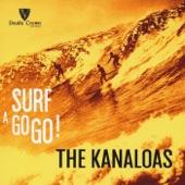 Surf a Go Go!
