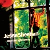 How the Light Gets In - EP, Jesse Sheehan