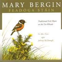 Feadóga Stáin by Mary Bergin on Apple Music
