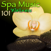 Spa Music 101 Wellness: Amazing Relaxing Sounds for Spas - Spa, Meditation Relax Club & Pure Massage Music