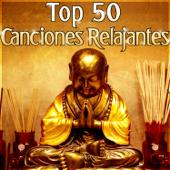 Top 50 Canciones Relajantes: Música para Sanar el Alma, Yoga Meditación, Reiki Relajación, Dormir Descansar, Zen Serenidad