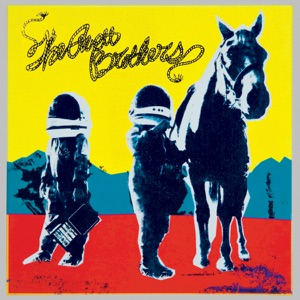 The Avett Brothers: Ain't No Man