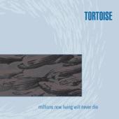 Tortoise - Djed