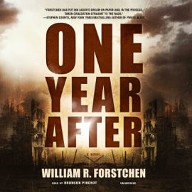 One Year After (Unabridged) audiobook
