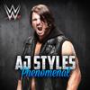 WWE Phenomenal AJ Styles - CFO$ mp3