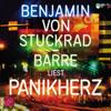 Panikherz - Benjamin von Stuckrad-Barre