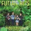 Future Hits - Ave De Nylon
