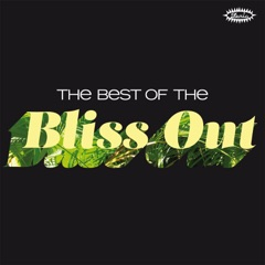 The Best of the Bliss Out