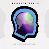 Perfect Sense (feat. Natasha Bedingfield) - Single
