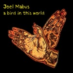 Joel Mabus - Welcome Back to the Blues